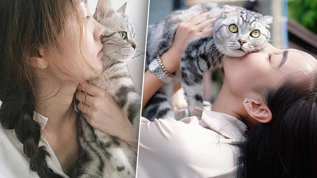ทาสแมว สัตว์เลี้ยงดารา เซลฟี่ แมว